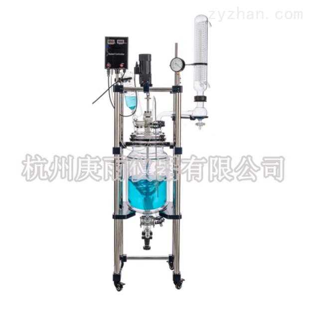 双层玻璃反应釜 GSFT-20L