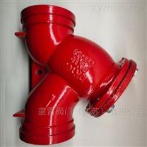 蓋雷溝槽連接Y型過濾器