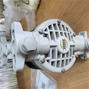 意大利DEBEM泵,DEBEM氣泵