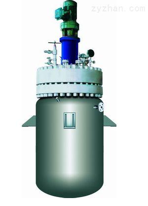 山东龙兴-高压磁力反应釜-