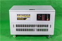 40kw静音汽油发电机双面板