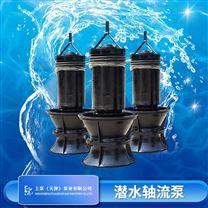 东山省QZB潜水轴流泵大型生产厂家