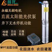 大流量太阳能水泵 直流无刷微型光伏泵
