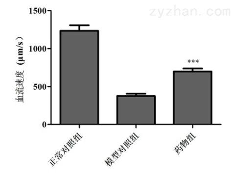 利用斑马鱼模型评价改善心脏出血功效