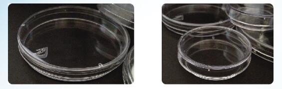 本生生物培养皿