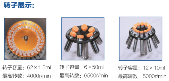 <strong><strong><strong><strong><strong><strong>真空离心浓缩仪</strong></strong></strong></strong></strong></strong>