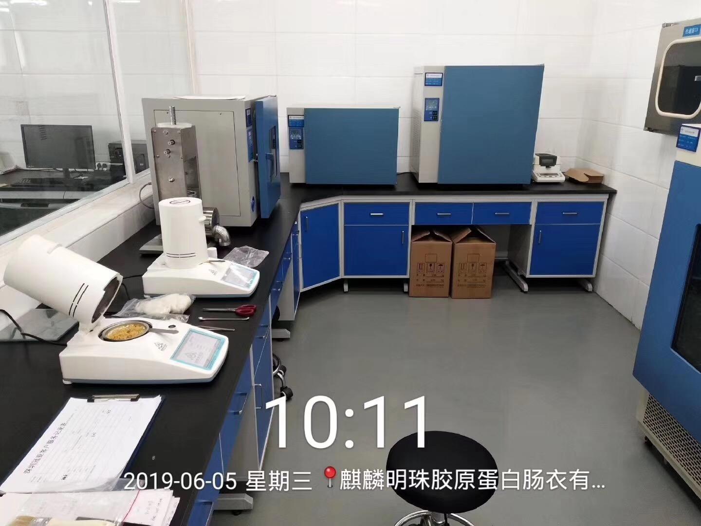 冻干粉水份含量测定仪